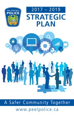 Strategic Plan 2017-2019